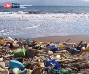 CNN: 2050 წლისათვის ოკეანეებში თევზზე მეტი პლასტმასის ნარჩენი იქნება