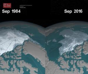 """NASA-ს დაკვირვებები არქტიკულ ოკეანეში – ორი კლიმატური ფენომენი """"ლა ნინია"""" და """"ელ ნინო"""" დედამიწაზე"""
